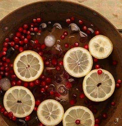 Cranberry Fusion - 10 DIY Detox Water For Weight Loss And Cleansing