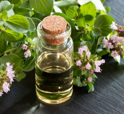 Oregano Oil-How to Remove Skin Tags Fast 8 Home Remedies That Really Work