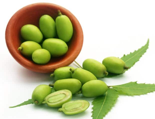 Neem- 13 Home Remedies To Get Rid Of Eczema