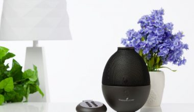 7 Remarkable Benefits Of Essential Oil Diffuser For Every Home