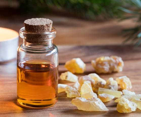 Frankincense Oil- Most Popular Essential Oils In The World