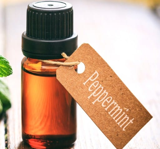 #PeppermintOil- 5 Ways To Use Essential Oils In The Car To Make Journeys So Much Better (& Safer) #EssentialOils