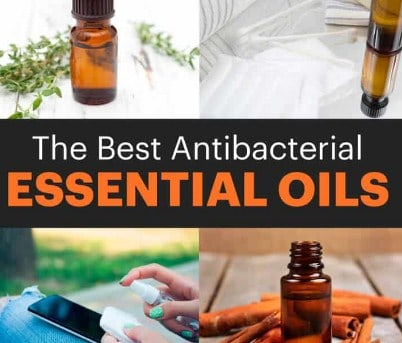 7 Most Powerful Antibacterial Essential Oils & How To Use Them