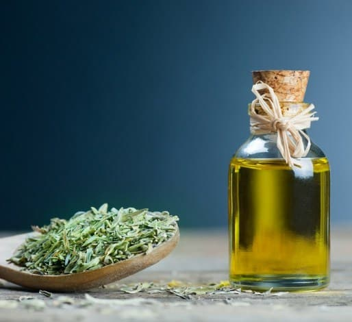 Thyme oil- Most Powerful Antibacterial Essential Oils