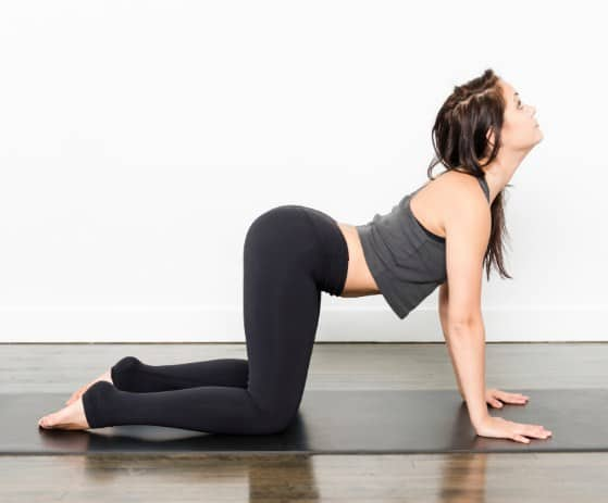 Cat and Cow Pose- 10 Best Cardio Workouts at Home – For Quick Weight Loss and Belly Fat Burning