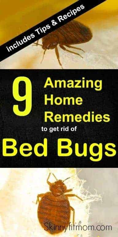 9 Best Home Remedies To Get Rid Of Bed Bugs Permanently