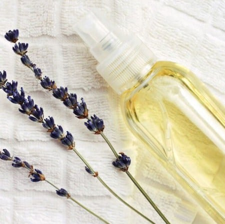 Lavender Oil Spray- Best Home Remedies To Get Rid Of Bed Bugs
