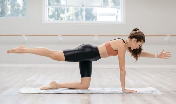 Quadruped Leg Lift - 13 Best At-Home Workout Routine