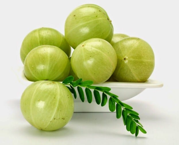 Indian Gooseberry-10 Home Remedies To Lower Cholesterol Naturally in 3 Days