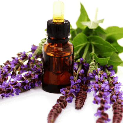 Clary Sage Oil helps to balance hormones