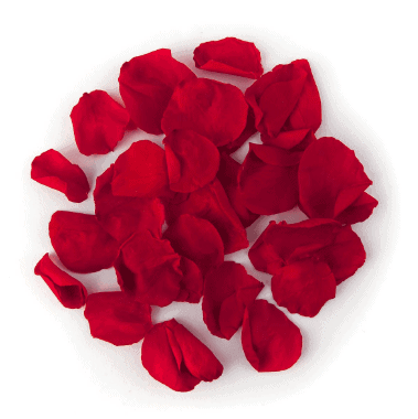 Rose Petals - Home Remedies To Cure Chapped Lips Fast