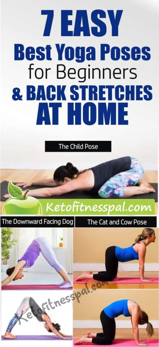 These best yoga poses for beginners will help you to achieve stability before moving on to doing more challenging poses. They are also a great way to stretch your back, achieving a strong back in the process.