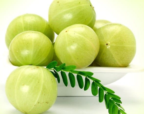Amla Berries to effectively get rid of boxcar scars