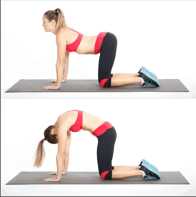 Cat-Back Stretch - Kegel Moves For Pelvic Muscles