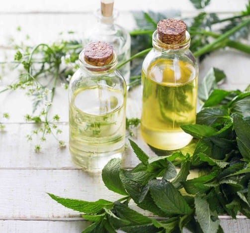 Essential oils to make skincare products