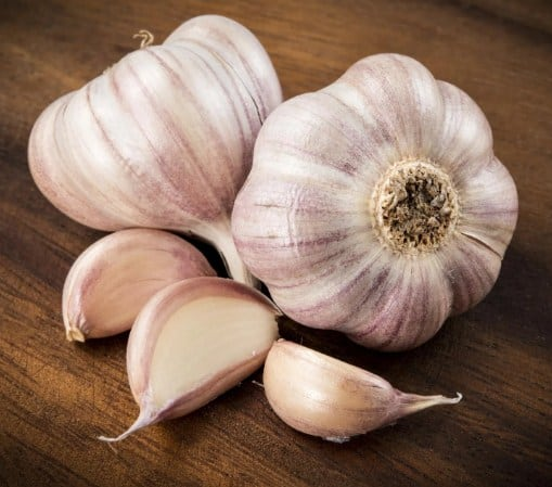 Garlic- 11 Home Remedies for Head Lice That Really Work