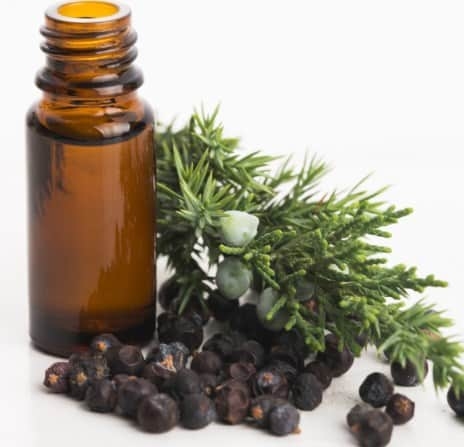 Juniper Berry Oil- Best Essential Oil for Acne or Pimple.