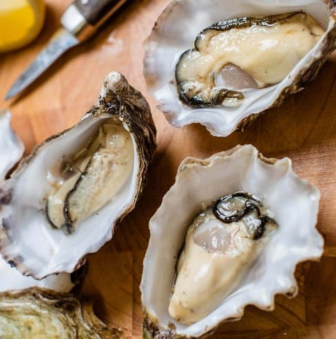Oyster-Fat burning food
