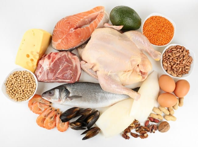 Add Protein to Your Diet to burn excess fat
