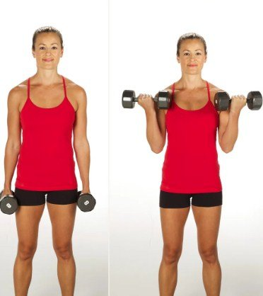 Bicep Curls- 10 Full Body Strength Training Workouts