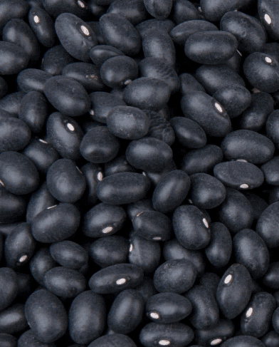 Black Beans for Weight Loss