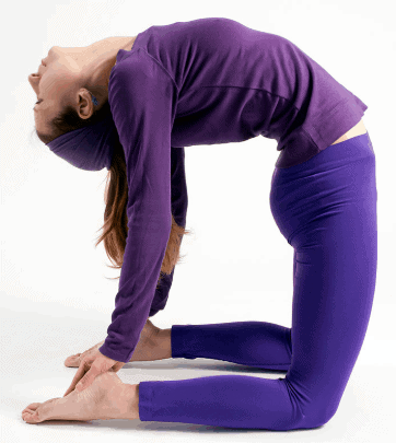 Camel Pose- Proven exercises to reduce knee joint pain