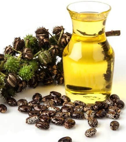 Castor oil - How To Get Rid Of Stretch Marks