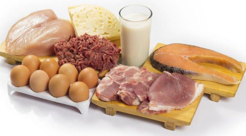 Eat Fibers and Proteins - Amazing Diet for Quick Weight Loss