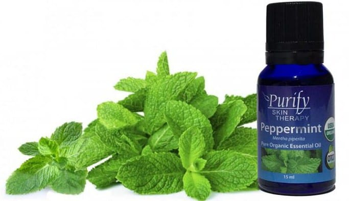 Peppermint essentPeppermint essential oil- 7 Essential Oil for treating sunburnial oil- 7 Essential Oil for treating sunburn