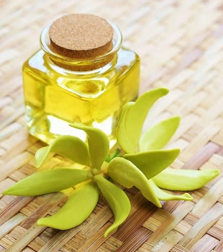 Ylang Ylang Oil- Essential Oils to remove scars, wrinkles and age spots