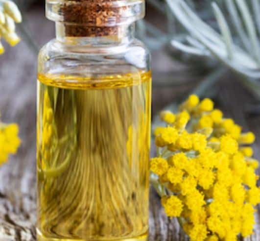 Helichrysum Essential Oil- 6 Best Essential Oils For Headache and Migraine Relief