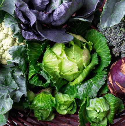 Cruciferous Vegetables- Other Foods That Will Help You Burn Belly Fat Fast