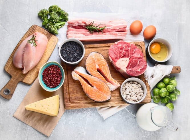 High Quality Protein for weight loss
