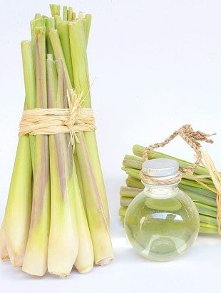 Lemon grass oil- essential oils for arthritis