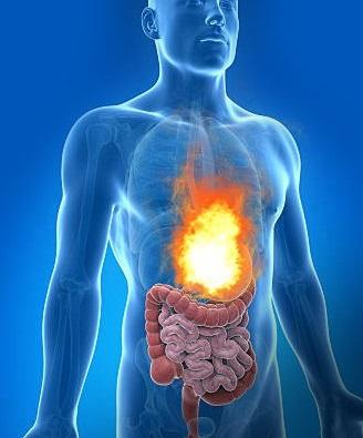 The pain that accompanies heart burn and digestive problem can be very annoying. Do you know there are organic treatments for it? Here are remedies for acid reflux that works.