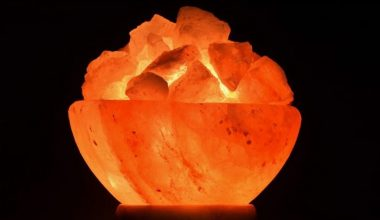 14 Weirdest, Coolest & Most Unique Himalayan Salt Lamps You Can Buy Right Now