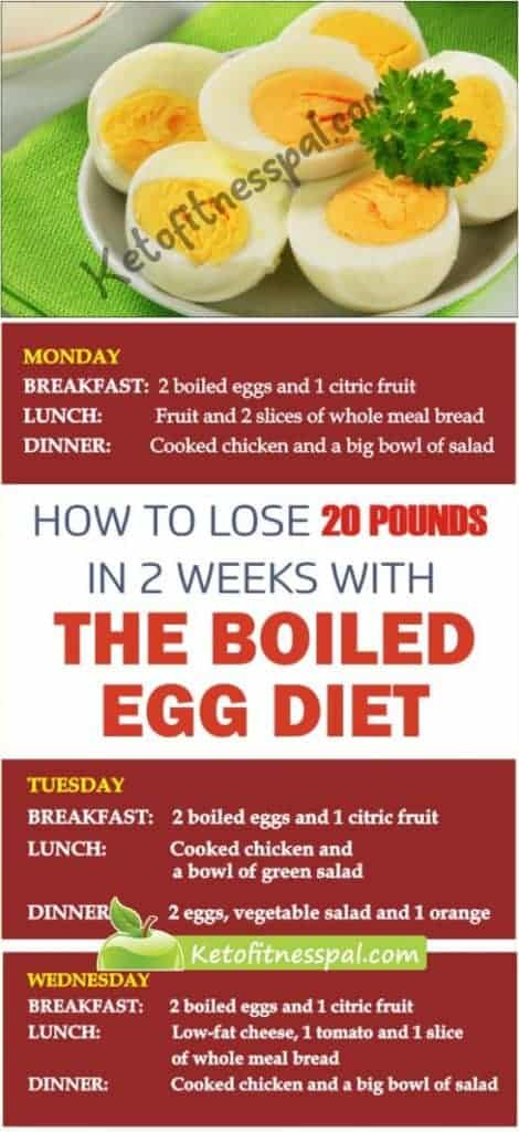 The 14-day egg diet menu plan is perfect for those who are looking to get quick weight loss result in little time! If you follow it strictly, you will get amazing results that will blow your mind!