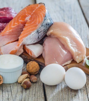 Protein- for Fat Burning And Quick Weight Loss