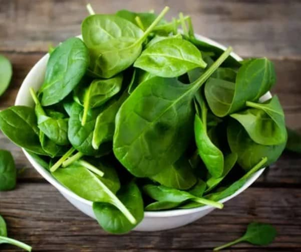 Spinach-10 Best Fiber Rich Food For Weight Loss