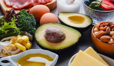 Ketogenic Diet Guide : Understanding Keto and Why It Might Be for You