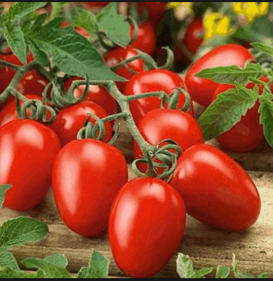Tomatoes -Vegetables that help with inflammation