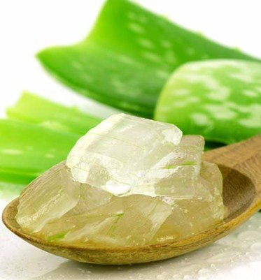 Aloe Vera to make your skin firm naturally