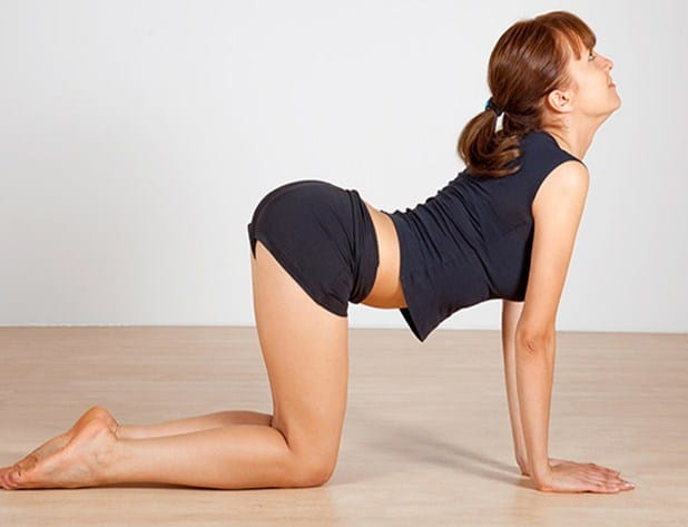 Cat-Cow Pose -Effective Yoga Poses for Neck and Back Pain Relief