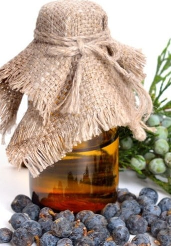 Juniper Essential Oil - Natural Essential Oils For Weight Loss