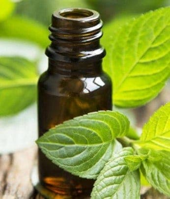Peppermint Oil- Irritable Bowel Syndrome Treatment