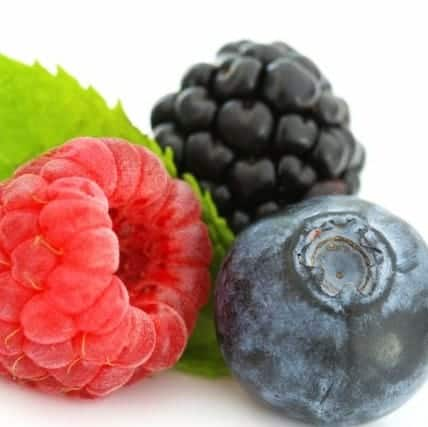 Berries- Meal Plan for weight loss