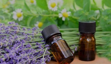 How To Use Essential Oils For Sagging Skin and Get Fast Results